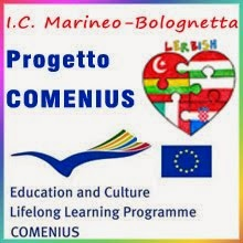 bannercomenius